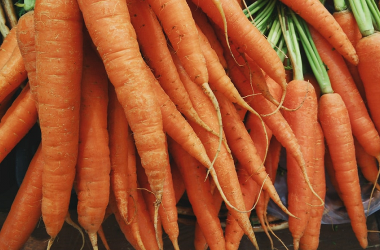 A bunch of carrots pulled out the ground