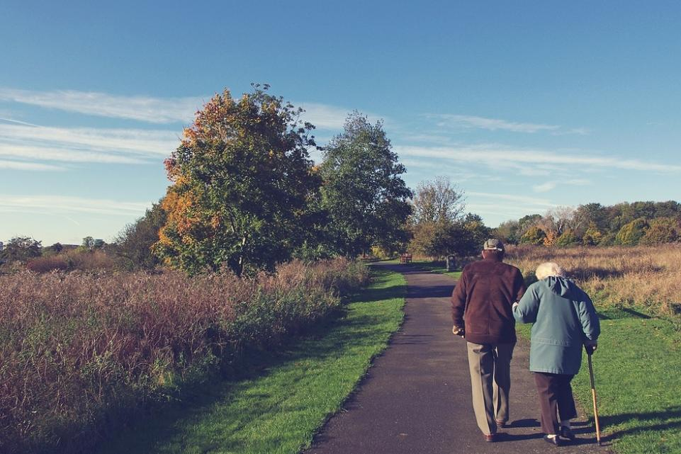 health - social care - elderly couple in countryside