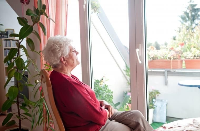 Photo of elderly lady looking out the window