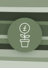 Image of plant pot with money sign