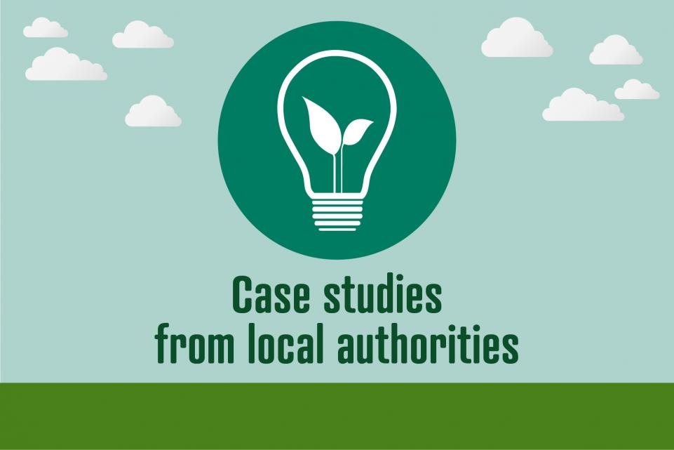 Image of light bulb icon with text below reading 'case studies from local authorities'