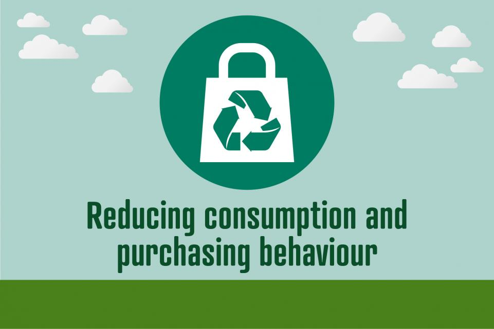 Picture of icon with bag and recycling logo, with text reading 'reducing consumption and purchasing behaviour'
