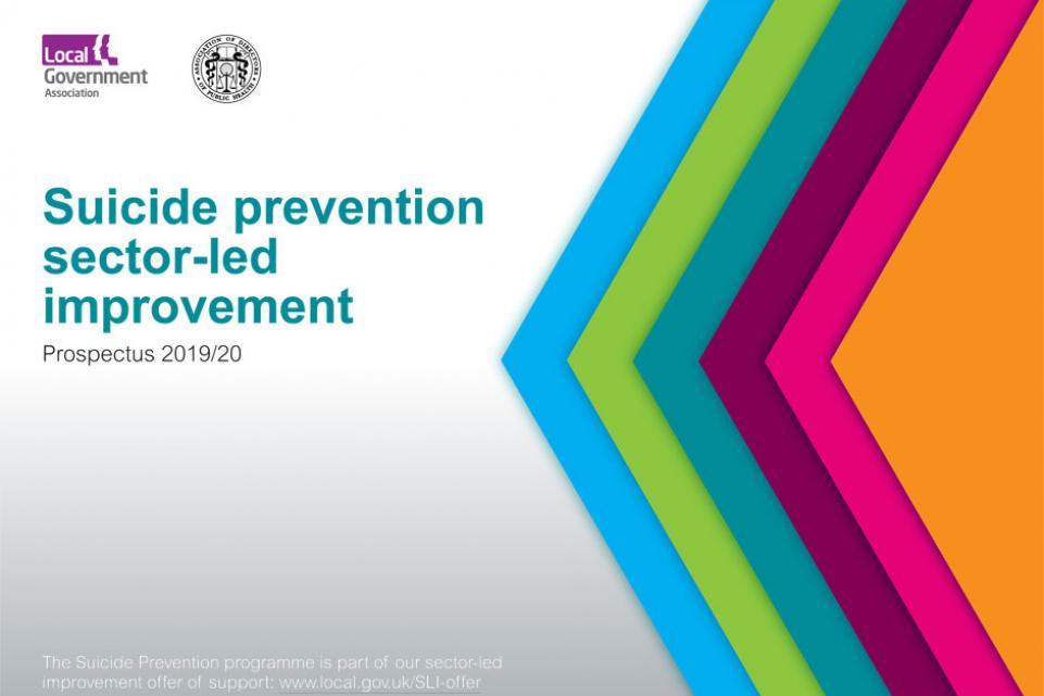 Suicide prevention sector-led improvement prospectus 2019/20
