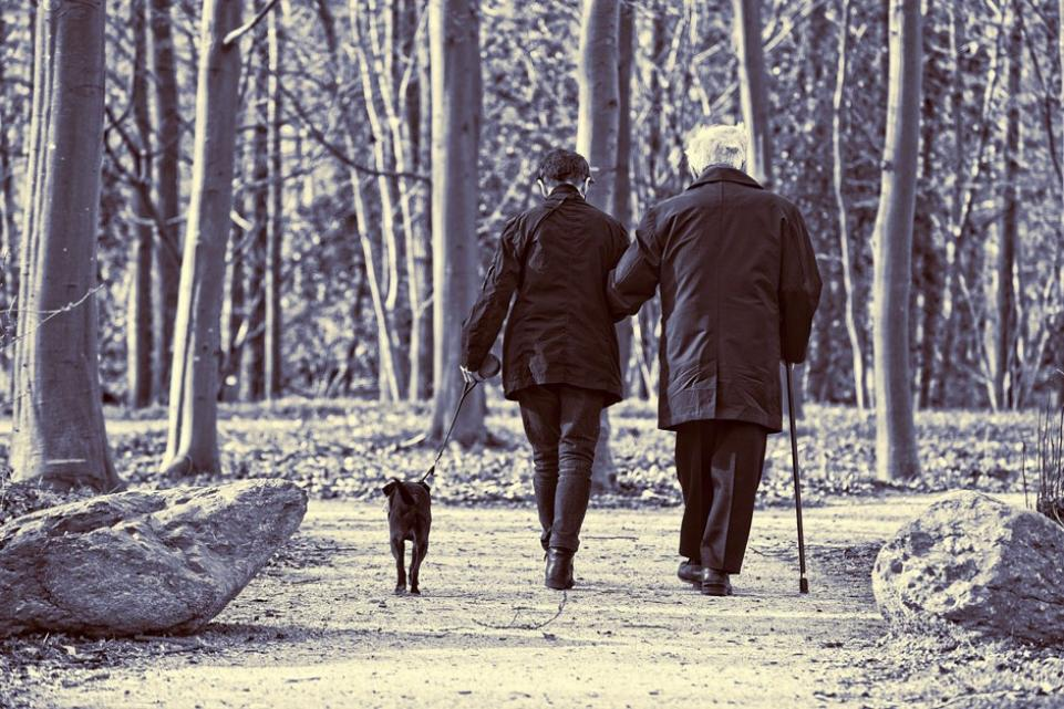 Elderly couple and a dog walking through the woods
