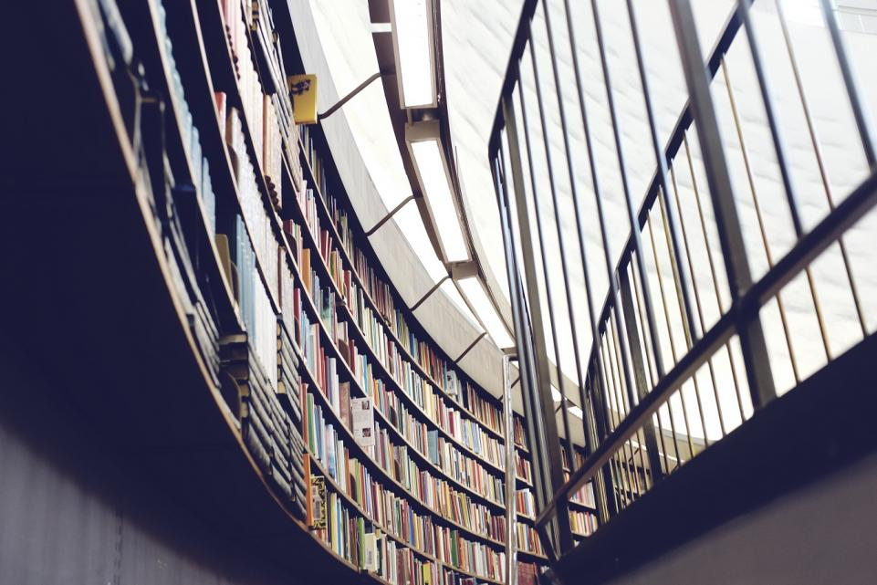 Delivering local solutions for public library services